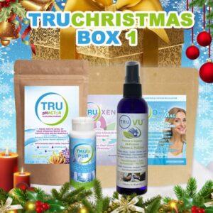 TRU Christmas GOLD BOX 1